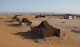 explore_desert_3