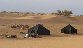 Desert / 5
