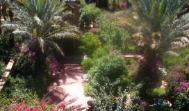 Garden / 2