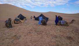 explore_desert_8